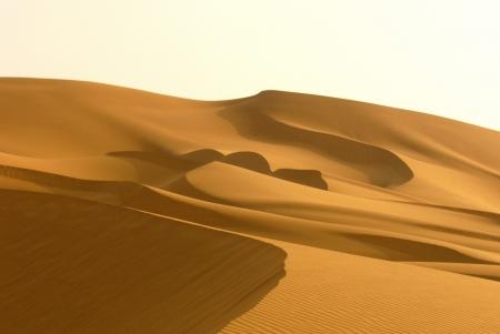 Panoramic View of Sand Dunes