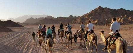 Randonnée chamelière à Hurghada