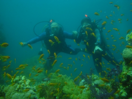 PADI Open Water Course in Sharm
