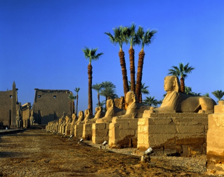 Avenue of Sphinxes and Luxor Temple