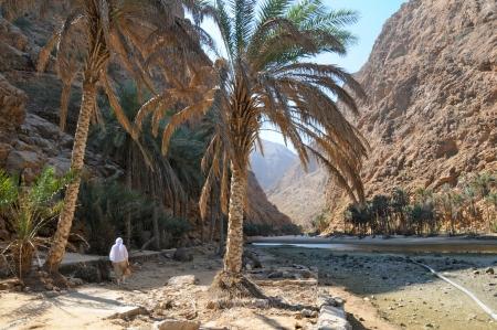 Wadi Shap
