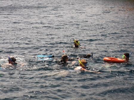 Snorkeling in Ras Mohamed National Park