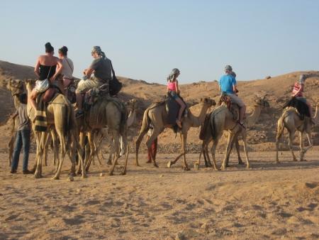 Camel Riding Adventure in Sinai Desert