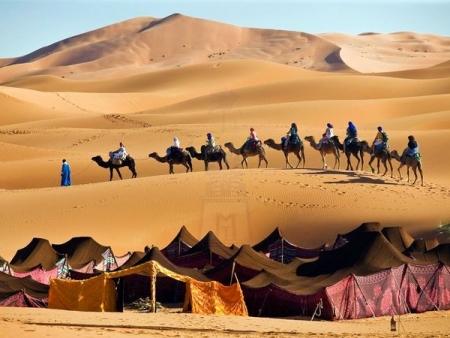 ラクダ乗り、モロッコサハラ