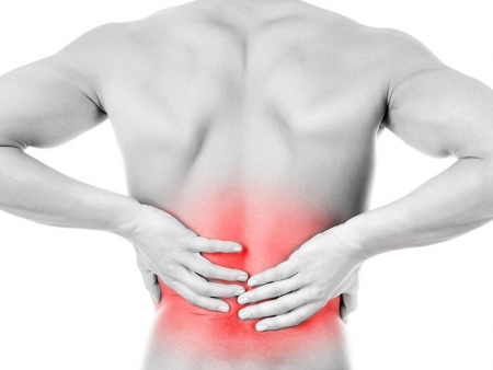 What are Causes of Low Back Pain?