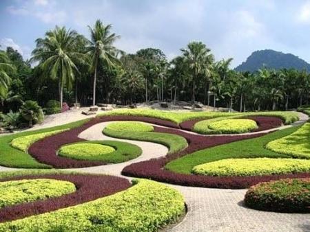Jardin botanique d'Oman
