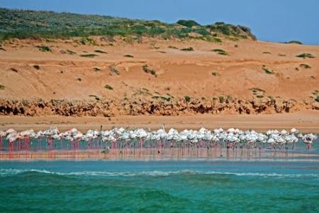 Spiaggia di Oualidia