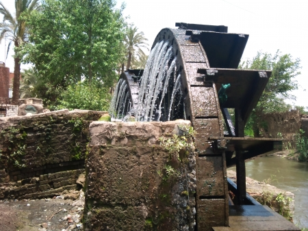 Water wheels of Fayoum Oasis.