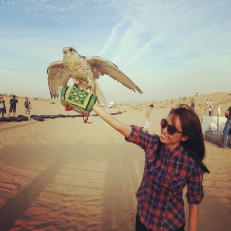 Falconry Experience in Dubai Desert