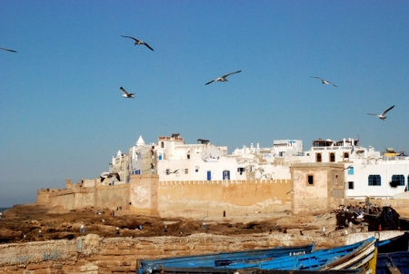 The Nature in Essaouira