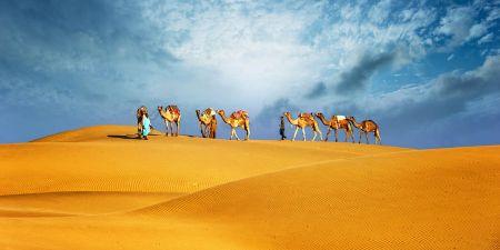 Excursiones en Dubai y Abu Dhabi