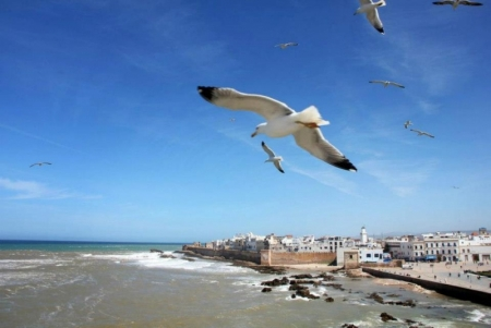 La playa de Essaouira