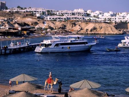 Tour Porto Sharm