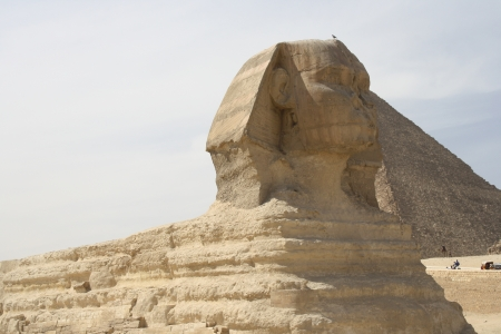 The Great Sphinx at Giza Necropolis