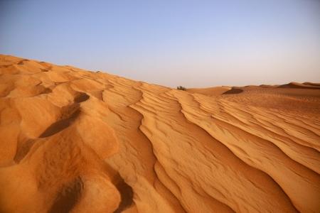Dia 3: Deserto em Dubai