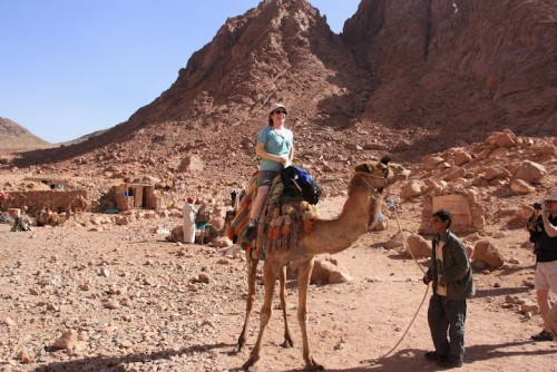Riding Camels in Sinai Desert