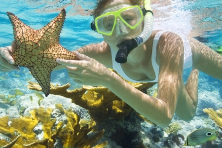 Snorkeling at Mahmya Beach - Giftun Island - Hurghada