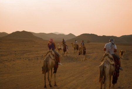 Desert Safari at Marsa Alam, Red Sea