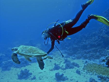 Snorkeling in Aqaba Jordan