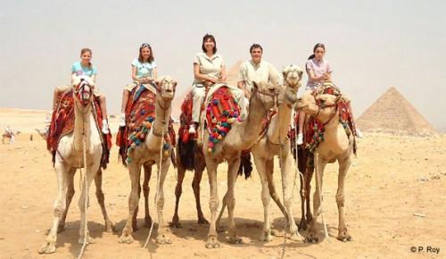 A Group of Tourists Enjoying Camel Ride at Giza Pyramids