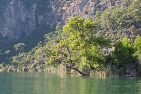 El rio de Dalyan