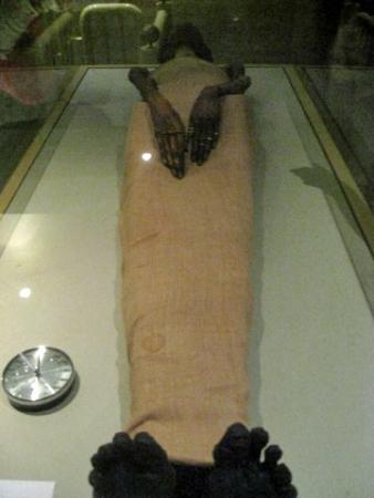 Mummies Room