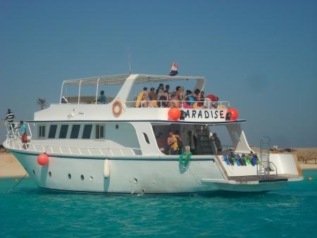 Schnorcheln Giftun Inseln ab Safaga