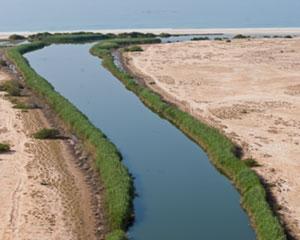 Khawr Taqah in Oman
