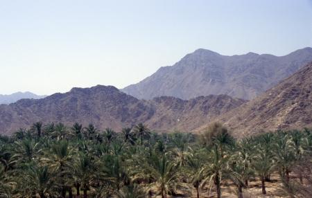 Badiya in Oman