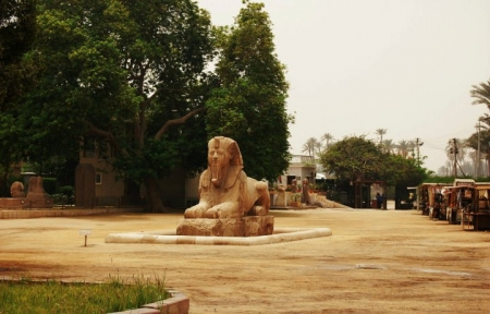 Sphinx in Memphis Necropolis