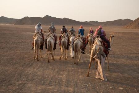 Desert Safari at Marsa Alam, Red Sea