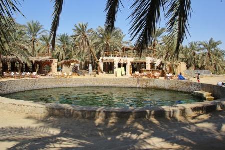 Cleopatra Spring, Siwa oasis