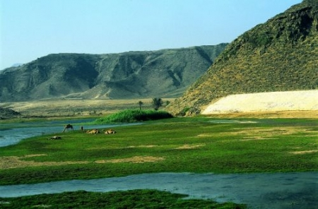 Khawr Awqad of Oman