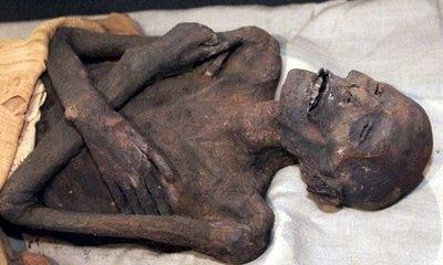 Pharaonic Mummy Inside Mummification Museum