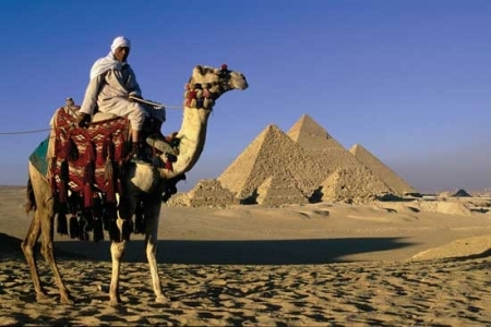 Camel ride at the Pyramids, Cairo
