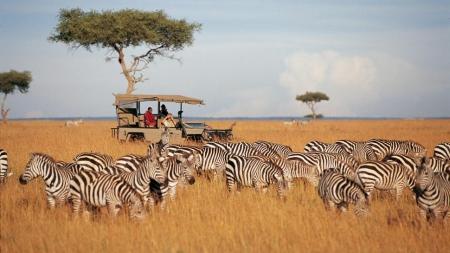 Kenya Big Five Trek Safari