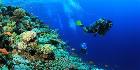 Tours en Hurghada