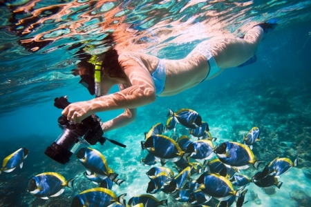 Snorkeling Adventure at Giftun Island in Red Sea