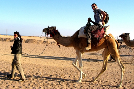 Desert Safari Trip in Dahab with a Camel ride