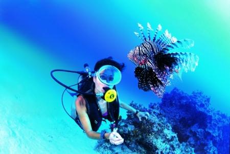 埃及潜水完美之旅