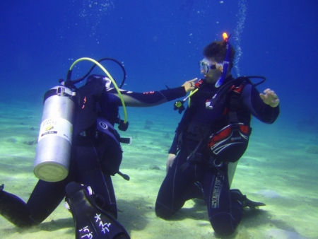 Introduction to Scuba Dive in Sharm