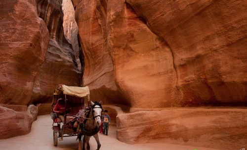 The Siq, (the main Passage to Petra)