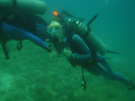Introductory Diving for beginners
