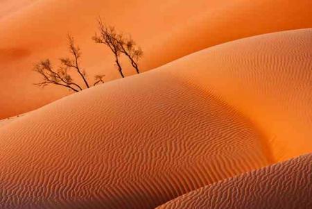 Escursioni Muscat