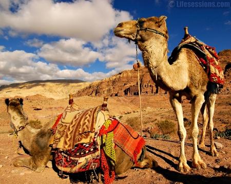 Guia de Viagem - Jordânia
