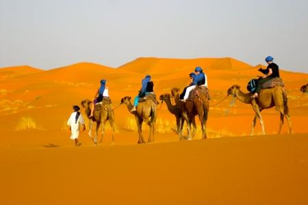 Excursiones de un día en Dubai
