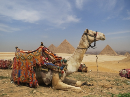 Guide d'Egypte