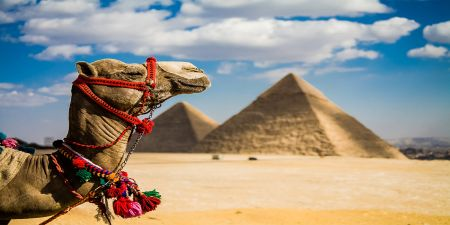 Viaggi in Egitto 2020