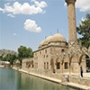 Sanli Urfa Rizvaniye Mosque And Halil Ul Rahman Lake