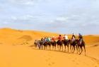 Erg Chebbi & Ouarzazate Desert Tour
